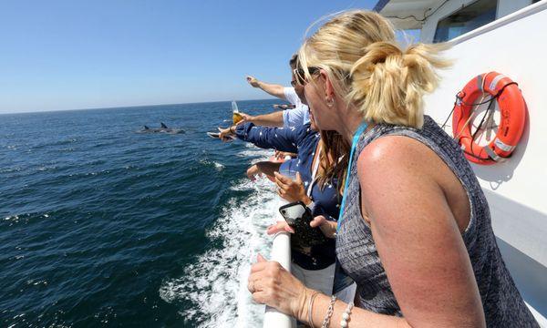 KJAZZ Champagne Brunch Cruises - Hornblower Cruises & Events